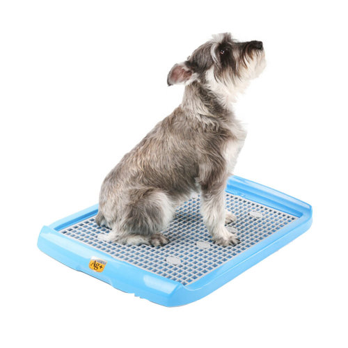 "High-quality Pet Supplies & Indoor Pet Potty Dog Toilet (24""*16""),SKY BLUE"