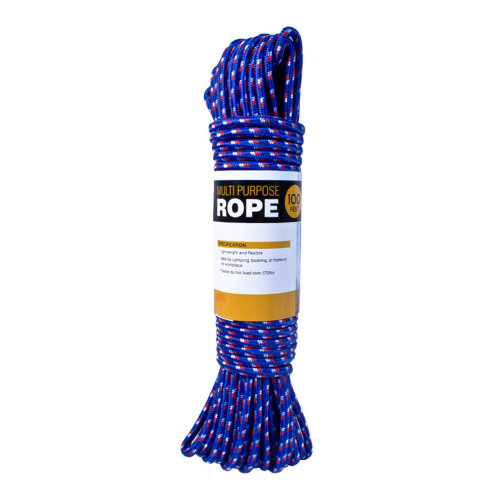 100Ft Multi-Purpose Rope - Blue