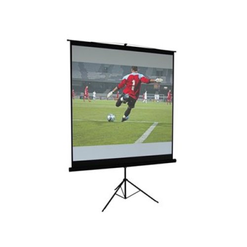 Matt White Height Adjustable Tripod Projection Screen 60''