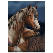 Lisa Parker Apache Blank Greeting Card Horse Foal Birthday Christmas Pagan Wiccan Gift