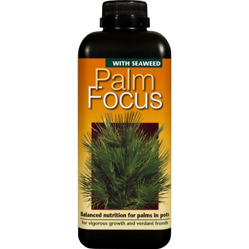 Palm Focus Concentrated Liquid Fertiliser 1 Litre