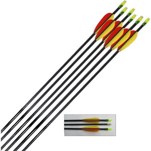 Archery Target Arrows Fibreglass 28 Inch (pack of 30)