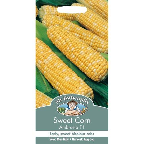 Mr Fothergills - Pictorial Packet - Vegetable - Sweet Corn Ambrosia F1 - 35 Seeds