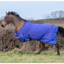 Gallop Limited Edition Purple Trojan Lite-Weight Turnout Rug