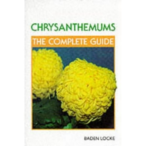 Chrysanthemums: The Complete Guide
