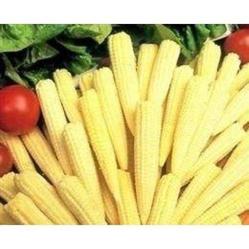 Vegetable - Sweetcorn - Minipop F1 - 400 Seeds