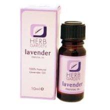 Herb Garden - 100% Natural Lavender Oil - 10ml -  herb garden 100 natural lavender oil 10ml