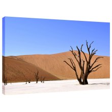 Desert Sand Tree Canvas Wall Art Picture Print