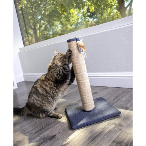 Petlinks Crackle Scratch Post Cat Scratcher-