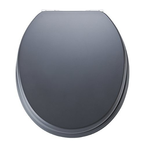 Terrific Toilet Seat Spirit Grey Ed09520Sc Alphanode Cool Chair Designs And Ideas Alphanodeonline